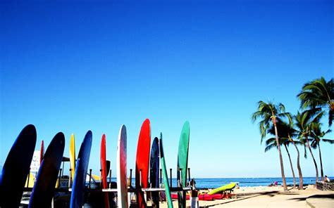 colored surfboards   beach summer sport   water