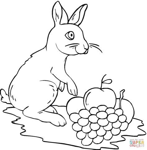 Druivenrank Kleurplaat by Rabbit And Grape Coloring Page Free Printable Coloring Pages
