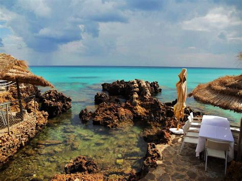 commerce bureau kelibia housing immo tunisie agence immobilière la