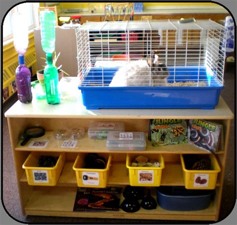 best 25 science area preschool ideas on 761 | 0adc697d1652e8bcf637b7f074513ff8 science area preschool science