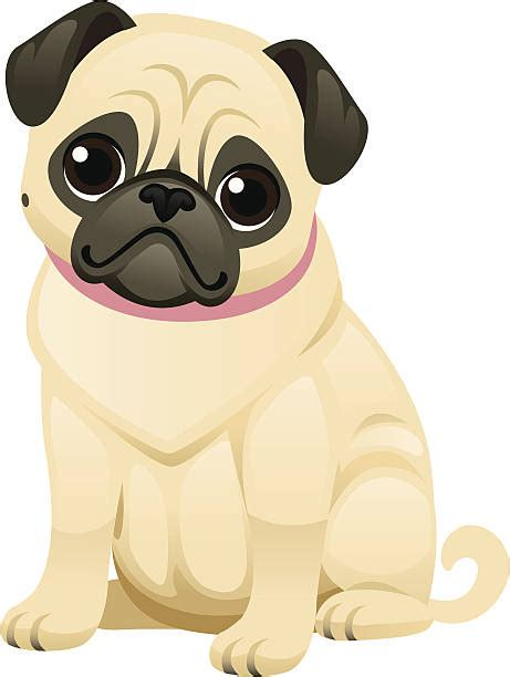 Pug Clip Pug Clipart Abstract Pencil And In Color Pug Clipart