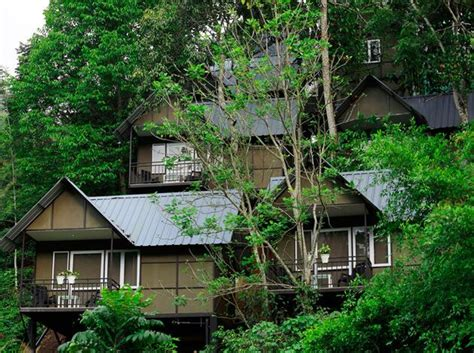 15 Best Resorts In Munnar  Go Closer To Nature Triphobo