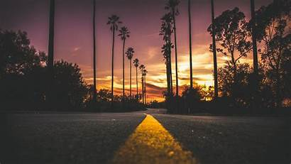 Road Background Palms Marking Sky Trees Widescreen