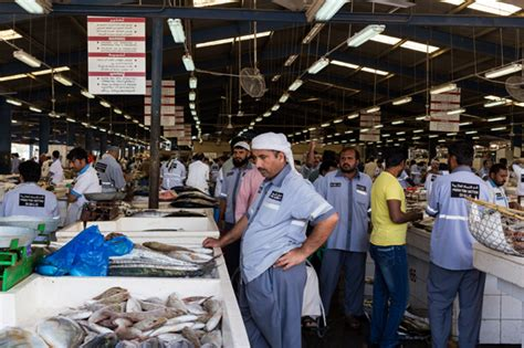 captured  essence  deira fish market