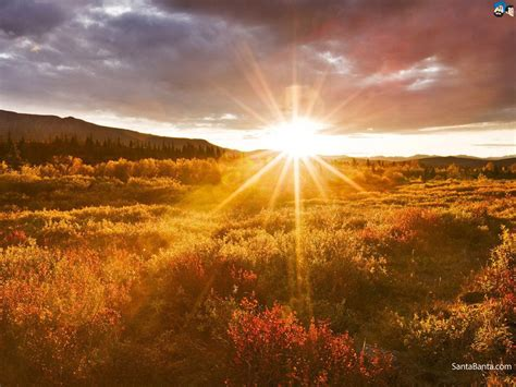 Best Sunrise Images  Zoom Wallpapers
