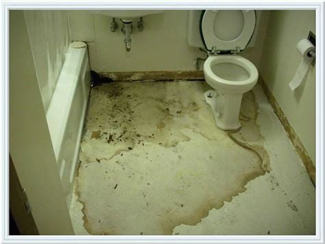 Leaking Pipes Can Damage Your Home-home Cleanz