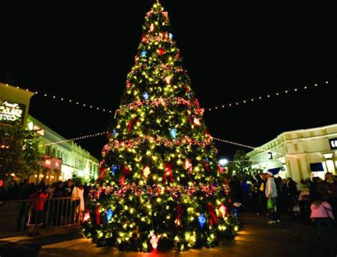 people who put up christmas lights 28 best why do we put up christmas trees when should