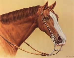 Beautiful Western Horse Tack