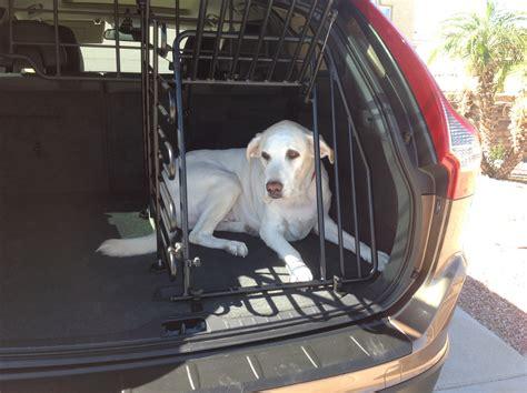 volvo xc suv   doggone safe car
