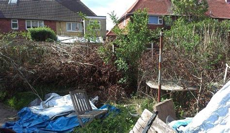 Backyard Cleanup Services  Outdoor Goods