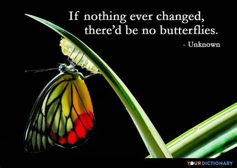 changed thered   butterflies