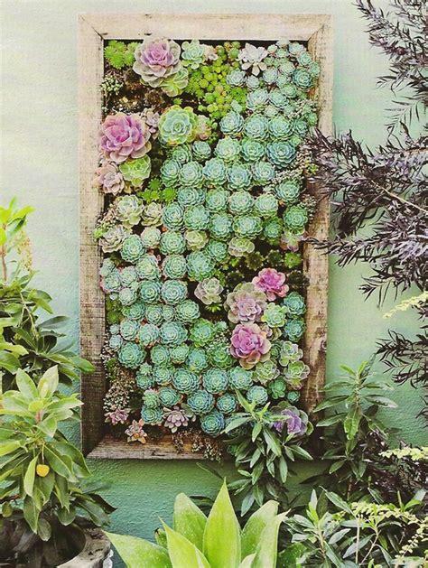 succulents wall garden ideas
