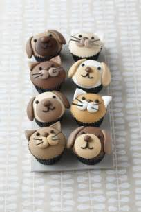 cat cupcakes 25 best ideas about cat cupcakes on kitty