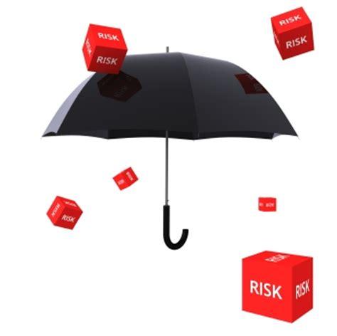 Mission Critical Software Llc  Risk Mitigation Approach