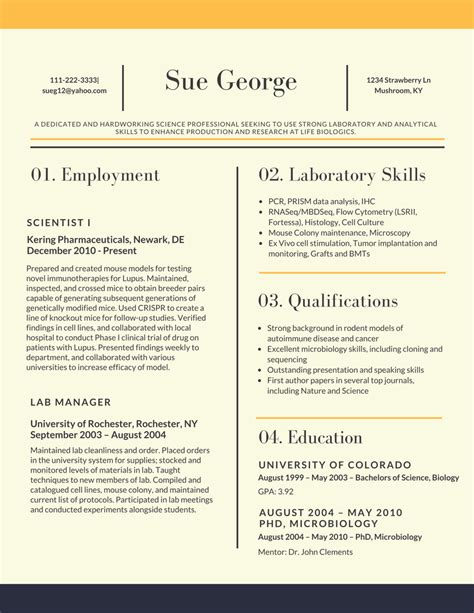 sle resume for assistant 2017 resume 2017