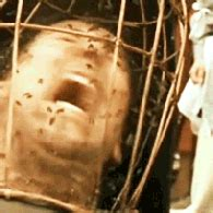 The Wicker Man. How much do you hate it? | TigerDroppings.com