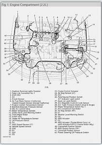 2003 Camry 4 Cyl Engine Diagram