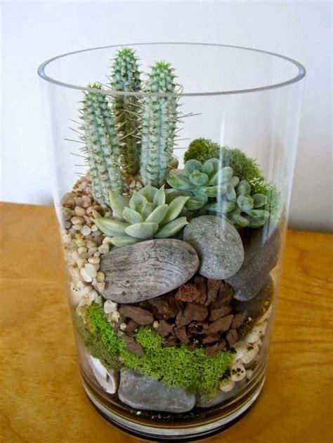 cute terrariums craft projects   fan