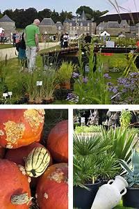 Plantes Amies Et Ennemies Au Potager : festival des plantes et saveurs au potager ev n ments jardin ~ Melissatoandfro.com Idées de Décoration