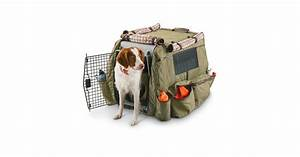 hunting dog training gear tips accessories With dog training accessories
