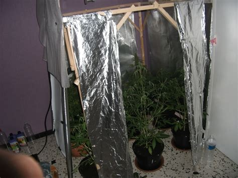 chambre de cannabis idees d chambre chambre culture cannabis dernier
