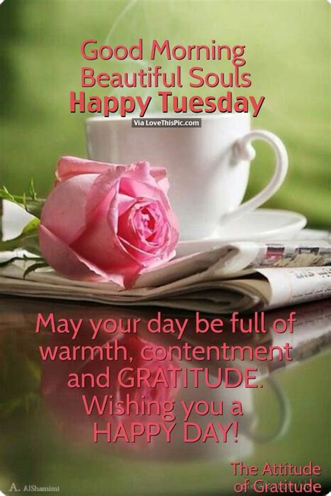 good morning beautiful souls happy tuesday pictures