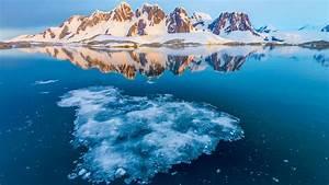 Extraordinary Antarctica - Natural World Safaris