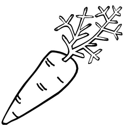 animations    coloring pages  fruits  vegetables