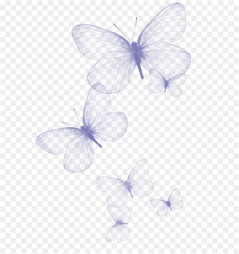 butterfly clip art transparent butterfly png clipart