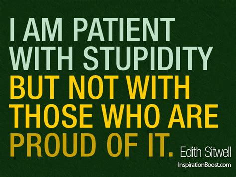 funny quotes  stupidity quotesgram