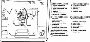 Post  2001 Monte Carlo Power Window Switc Wiring Diagram