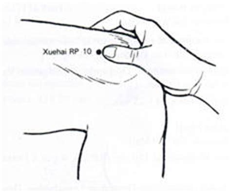 meridien du corps humain le meridien de la rate pancreas fr 233 d 233 ric medina magn 233 tiseur