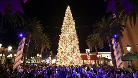 fashion island s annual holiday tree lighting visit