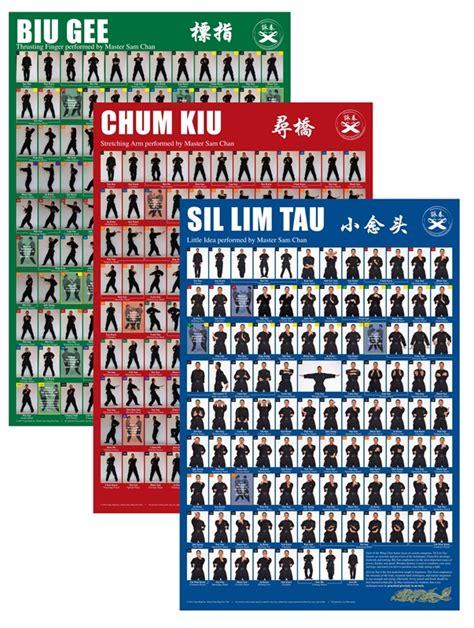 poster sam chan wing chun kung fu poster set