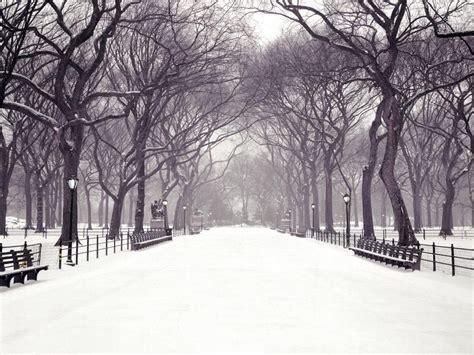 new york web central park margy s musings central park new york city