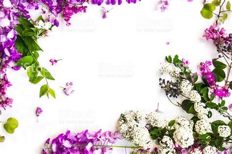 Lavender Flowers Powerpoint Templates