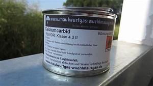 Was Tun Gegen Maulwürfe Und Wühlmäuse : wie sich calciumcarbid unter zusatz von wasser zersetzt ~ Lizthompson.info Haus und Dekorationen