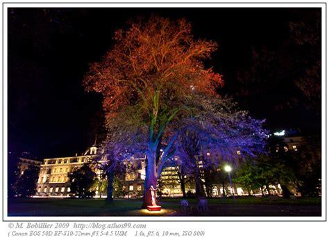 tree free hugs festival arbres et lumi 195 168 res blog photo