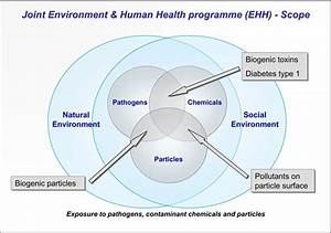 Diagram Showing The Scope Of The Environment  U0026 Human Health Programme