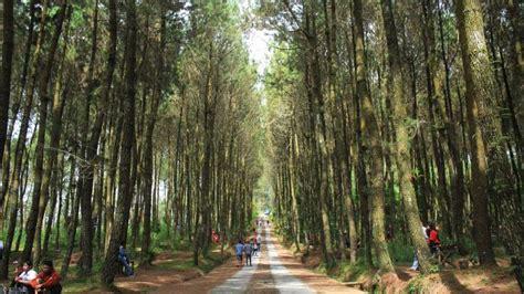 klhk tetapkan  hektar kawasan hutan  kegiatan