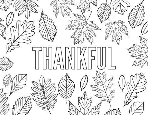 thanksgiving coloring pages  printable paper trail