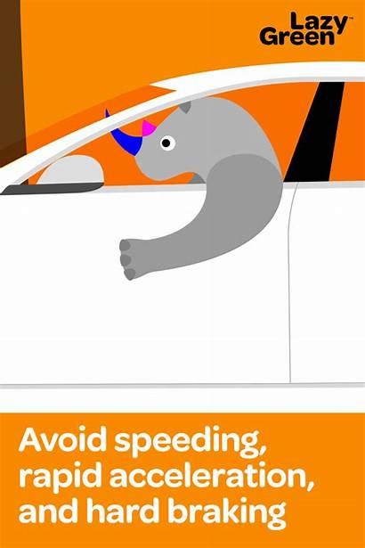 Hard Speeding Acceleration Rapid Braking Avoid Rhinos