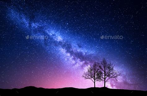 Starry Sky With Pink Milky Way And Trees Night Landscape
