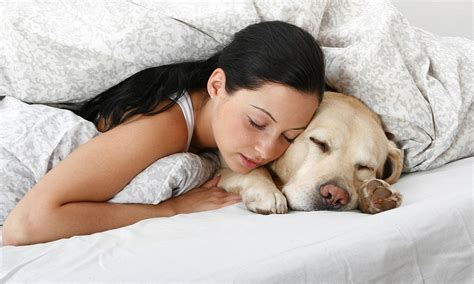 Don't Sleep With Your Pet, You May Catch Something