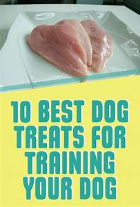 10 Best Dog Treats for Training Your Dog | More Dog ...