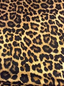 Best 25+ Leopard print background ideas on Pinterest ...