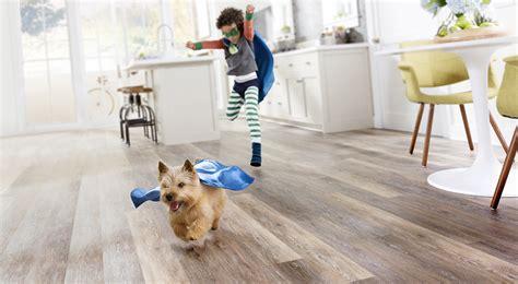 vinyl flooring and dogs vinyl or laminate flooring for dogs gurus floor