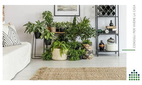 Piante da interno pendenti / piante autunnali da interno | decorazioni giardino fai da. Arredare con le piante da interno è la tendenza del momento