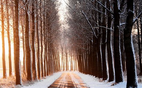 Artsy Backgrounds For Iphone Winter by Road Winter Wallpapers High Quality Free