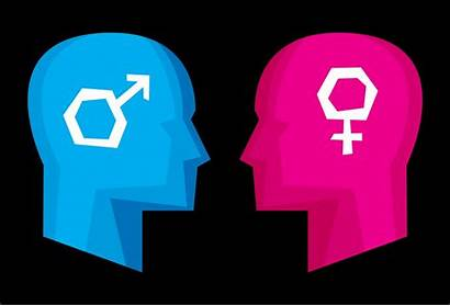 Male Female Brain Different Sexism Differences Brains